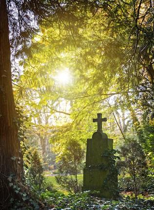 Claret - Funeral Caterers in Dorset.
